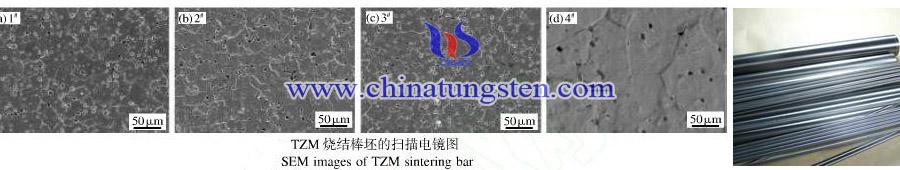 TZM alloy