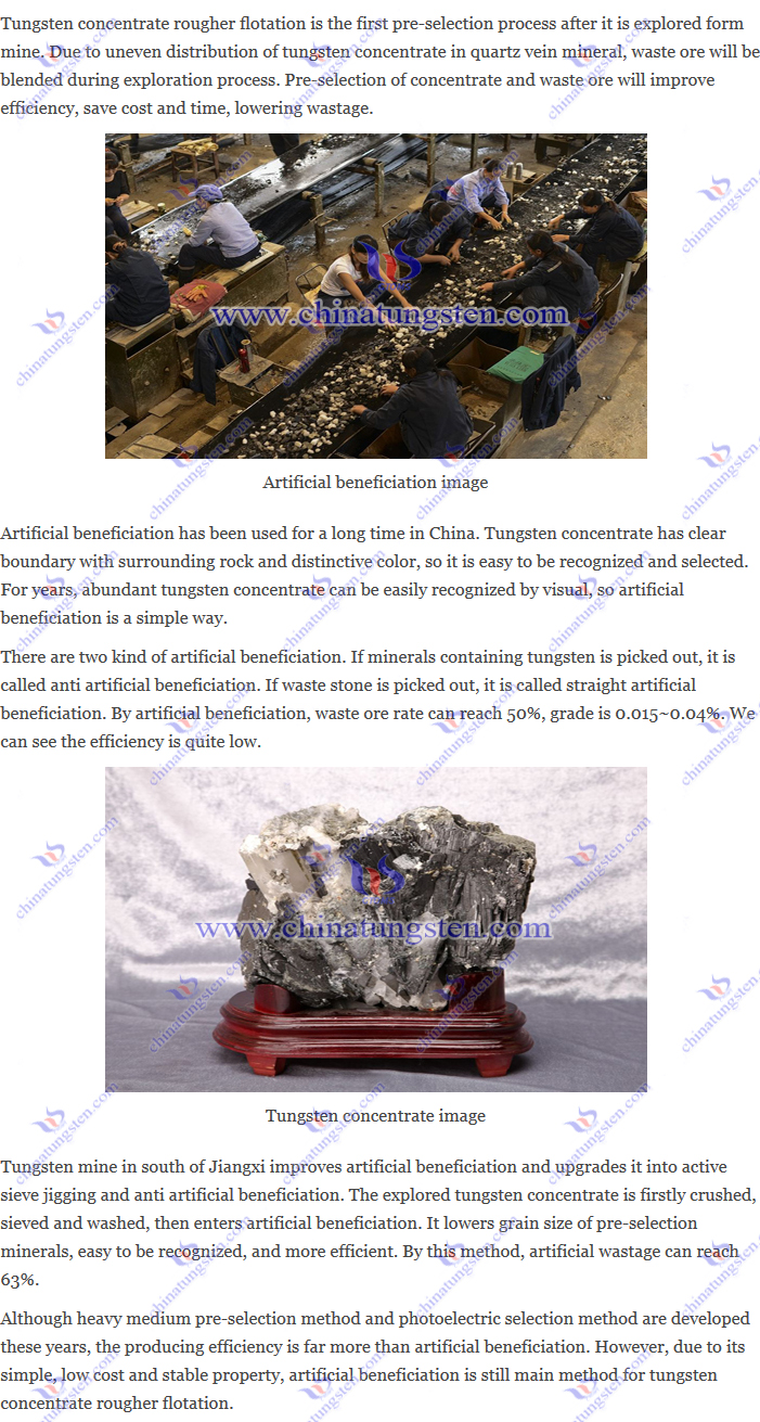 tungsten concentrate rougher flotation – artificial beneficiation image