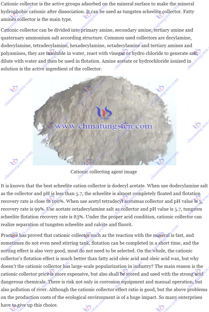 tungsten scheelite cationic collector image
