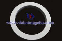 tungsten carbide seal picture