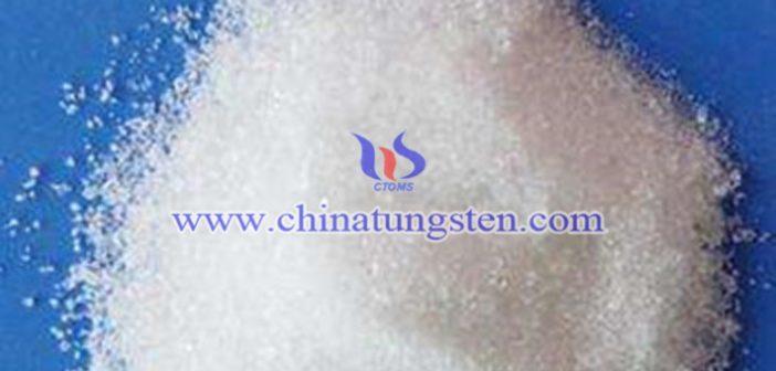 98% sodium tungstate dihydrate picture