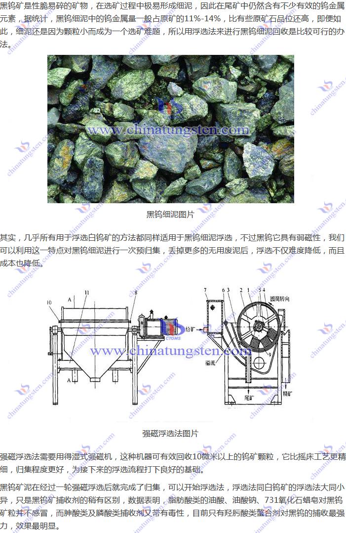 黑钨细泥回收--强磁浮选法图片
