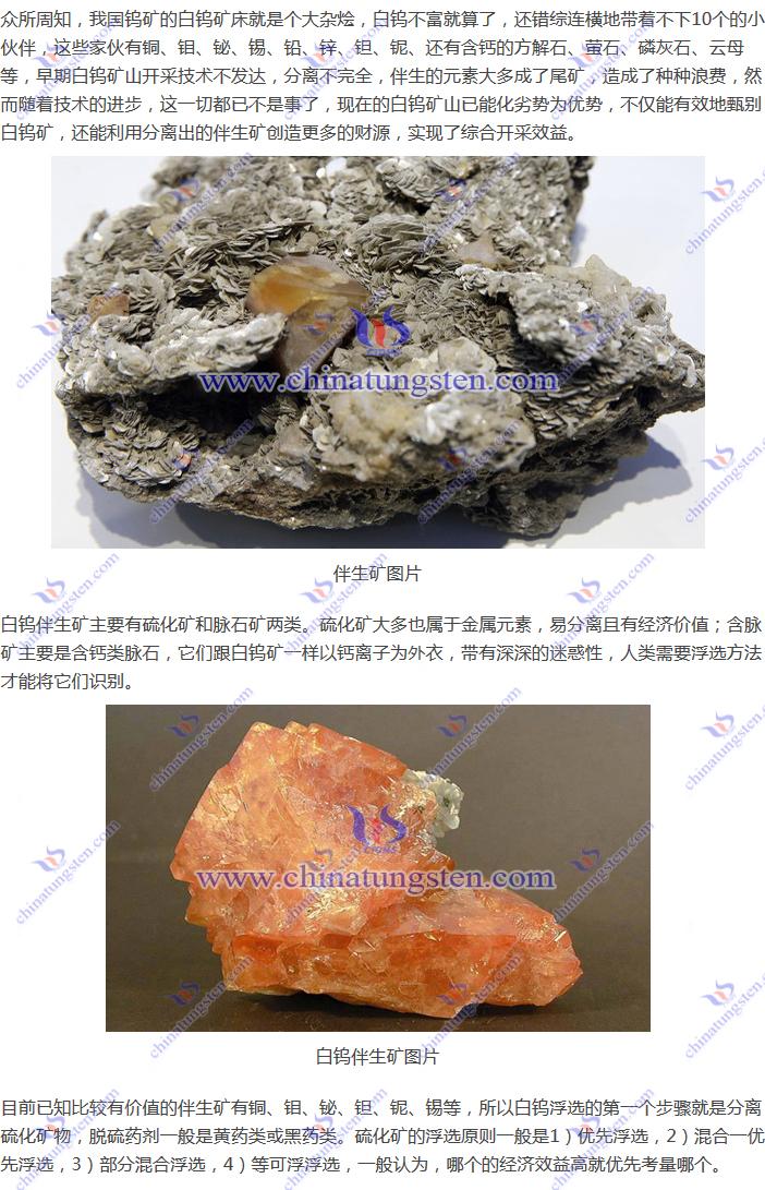 白钨伴生矿图片