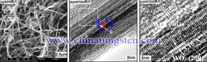 三氧化钨纳米棒SEM照片
