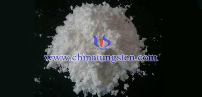 钼精矿、四钼酸铵、钼铁最新价格