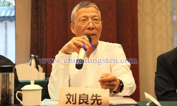 中国钨业协会副会长兼秘书长刘良先讲话