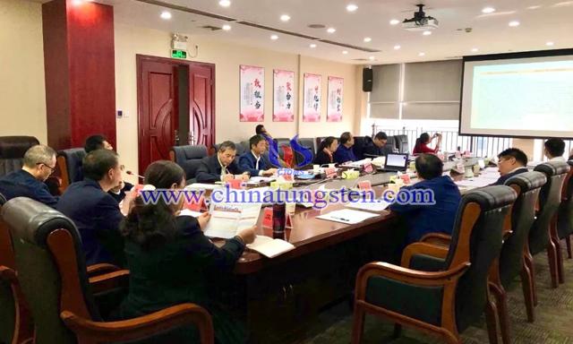 国务院发展研究中心宏观经济研究部副研究员江宇博士通过视频作报告