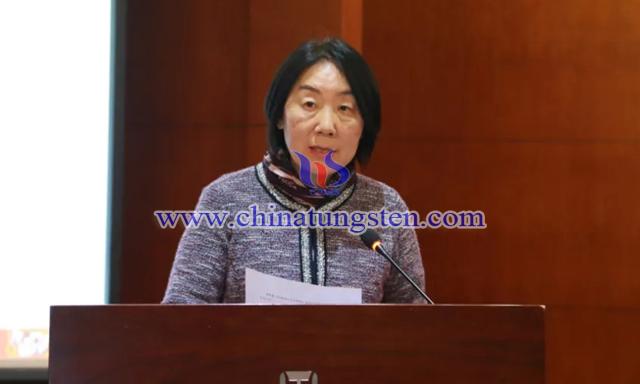 中国有色金属工业协会会员部主任王惠芬