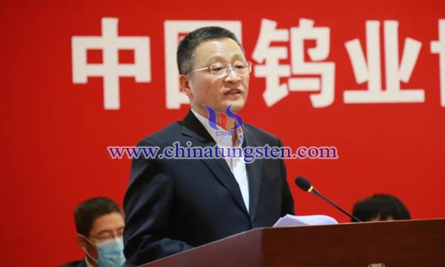 全国政协常委、中国有色金属工业协会党委书记葛红林
